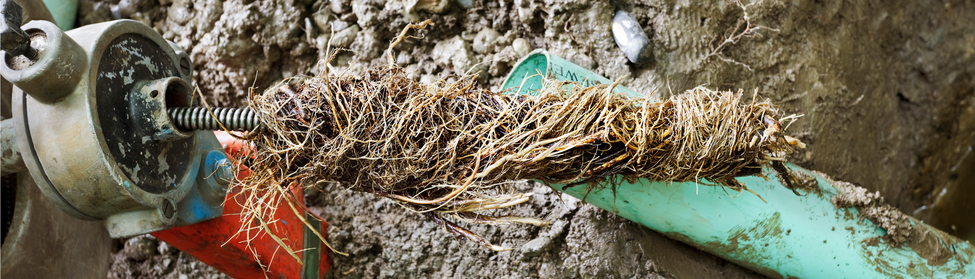 fix clogged drains outside your home