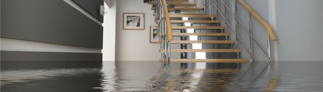 Flooded Home - Kotz